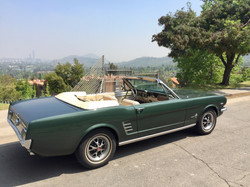 Ford Mustang (174)