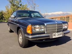 1981 MB 280CE (24)