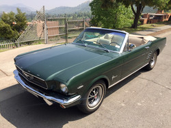 Ford Mustang (151)