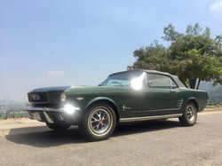 Ford Mustang (89)