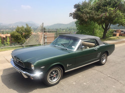 Ford Mustang (91)