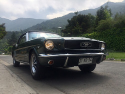 Ford Mustang (97)