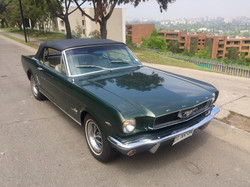 Ford Mustang (65)