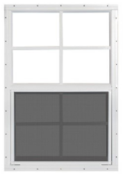 Wagler Non-Ins Window.PNG