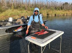 Kenai River Sockeye Salmon Fillets