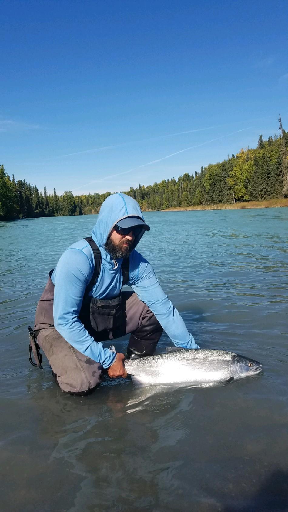 Kasilof River Silver Salmon