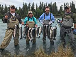 Kasilof River Sockeye Salmon