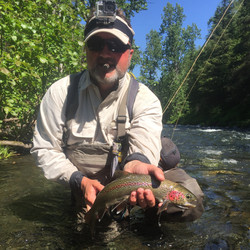 Russian River Cooper Landing Flyfishing Rainbow Trout