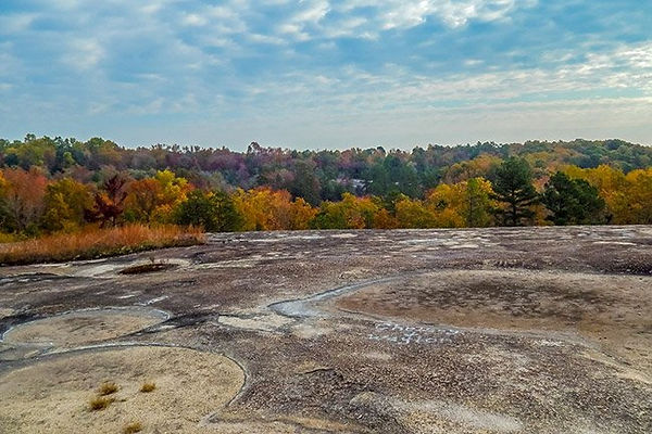 forty-acre-rock-foliage-sc.jpg