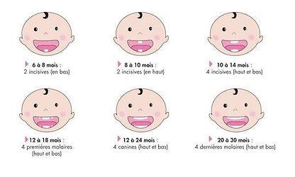 Les premières dents.jpg