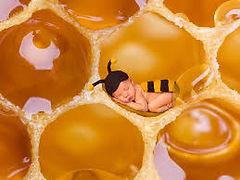 Pas de miel pour BB de moins d'un an.jpg