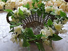 Wicker basket with stephanotis garland.j