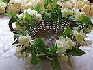 Wicker basket with stephanotis garland.j
