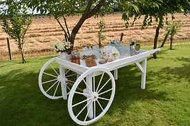 Market Cart Canapes and Welcome Drinks.J