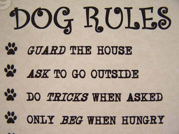 Dog Rules.JPG
