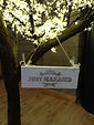 'Just Married' wedding hanging sign