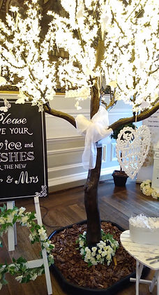 'Wedding Wishes' Tree at Hopetoun House.