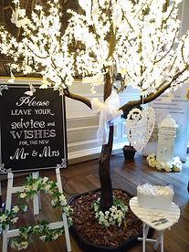 'Wedding Wishes' Tree at Hopetoun House.