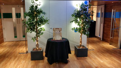 Fig Trees and Entrance Table