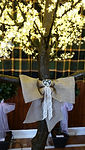 Hessian Bow on the Cherry Blossom Tree
