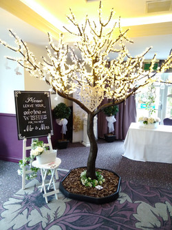 Wedding Wishes at the Huntingtower Hotel