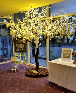 Cherry Blossom Wedding Wishes Tree at Rufflets, St Andrews