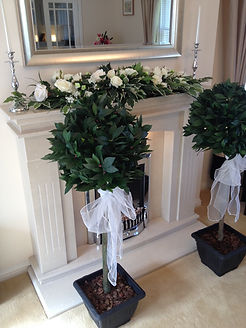 Bay Trees with organza sashes
