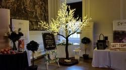 Wedding Wishes Cherry Blossom Tree at Hopetoun House