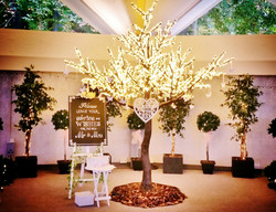 Wedding Wishes Tree at Atholl Palace