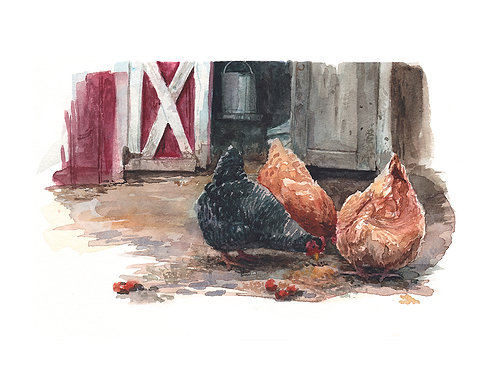 Halstead Hens