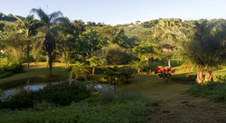 Serenade des Saveurs | Martinique |