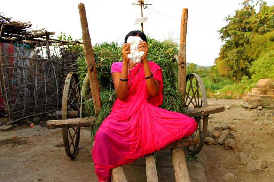 Faceless Farmer 2015