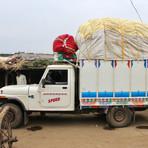Cotton Farming