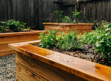 How Much, and How Often Should I Water My Garden?