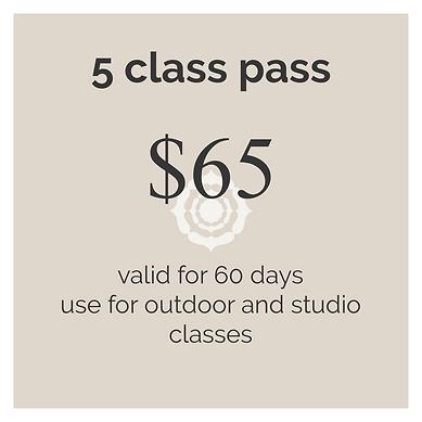 5 class pass.png