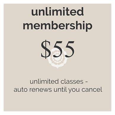 unlimited membership.png