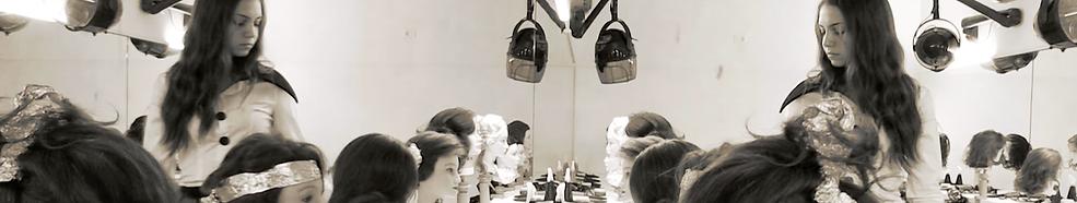 Andrea Acciai | Teatro e Formazione | Bologna | Pierino e il lupo | Andrea Acciai Orchestra Senzaspine