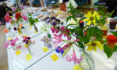 Uley Show held in Uley Village Hall