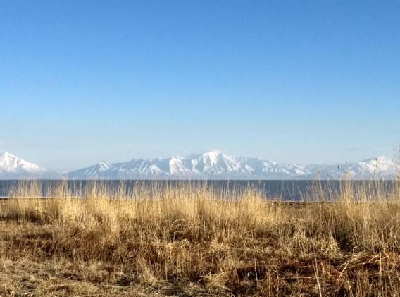 Grass, Lake, Sky - Utah Lake