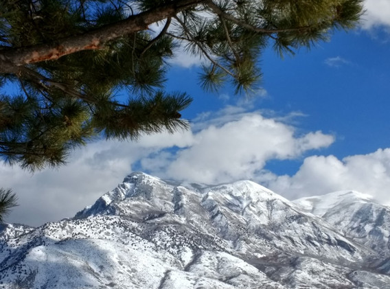 Peaking at the Peak - Mahogany Peak