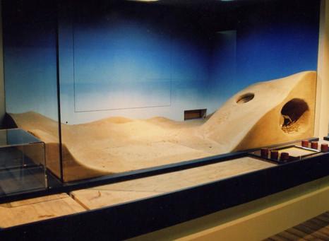 Cleeland Wildlife Park 2005