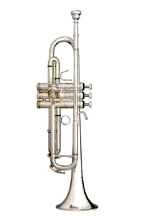 Trompeta Bb. Marca B&S modelo Exquisite