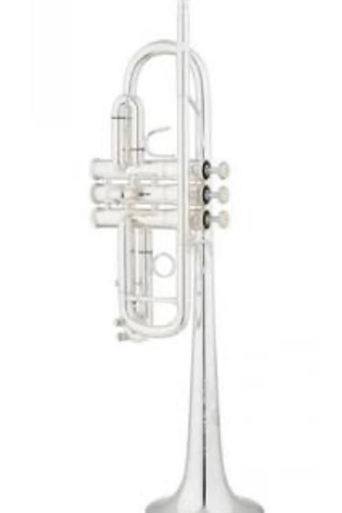 Trompeta Bb Eastman ETR 524
