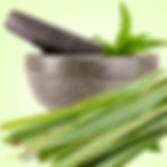 Lemon Grass.png