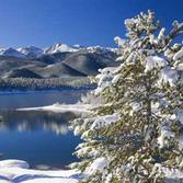 Aspen Winter.png