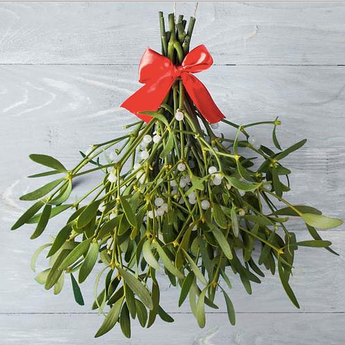 Mistletoe / Christmas Tree