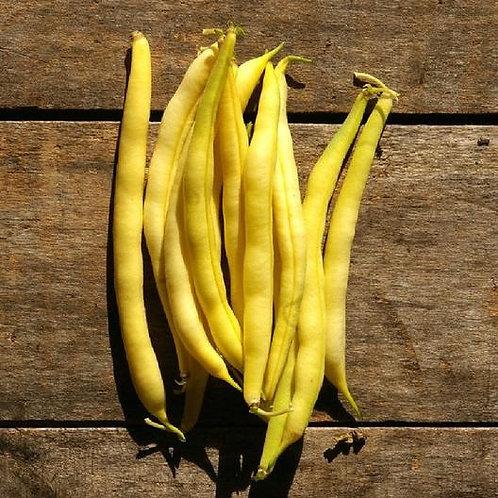 Yellow Wax Bean