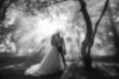 Der Hochzeitsfilmer.jpeg