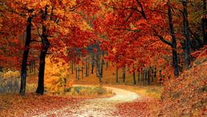 Start in die Herbstferien 2021