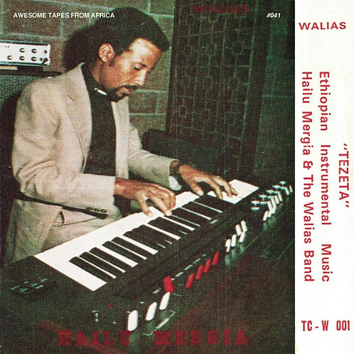 Hailu Mergia & The Walias Band - Tezeta LP Released 04/06/21